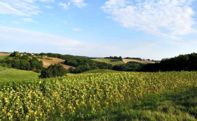 The Hidden Gem Of Monclar De Quercy…