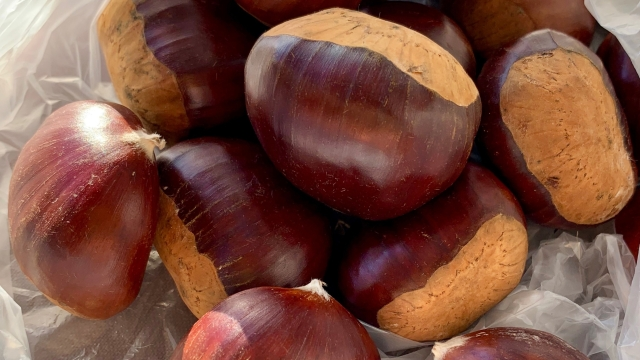 Roasted Chestnuts…